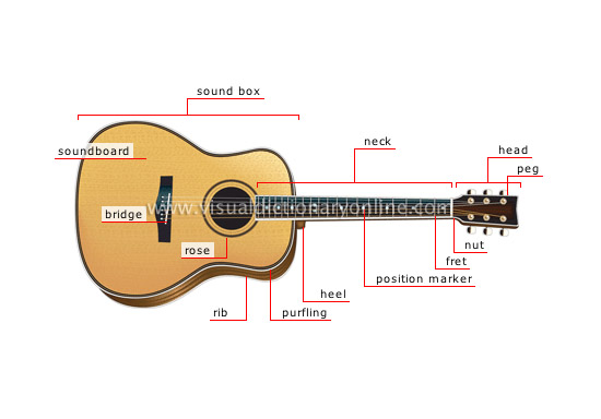 acoustic guitar - Visual Dictionary Online