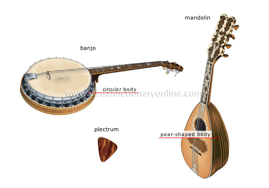 traditional musical instruments [4]