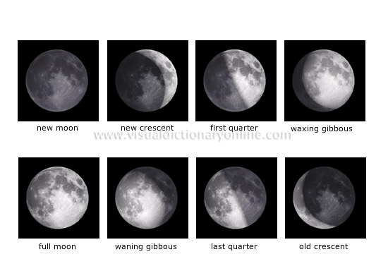 ASTRONOMY :: CELESTIAL BODIES :: MOON :: PHASES OF THE MOON image