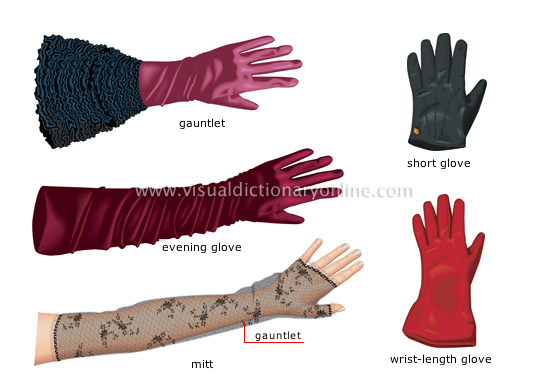 women&#8217s gloves