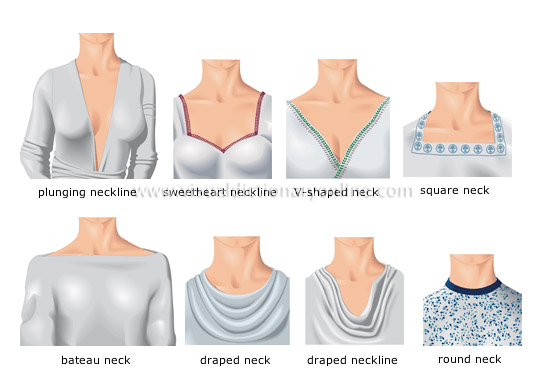 necklines and necks