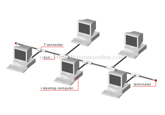 COMMUNICATIONS :: OFFICE AUTOMATION :: EXAMPLES OF NETWORKS :: BUS ...