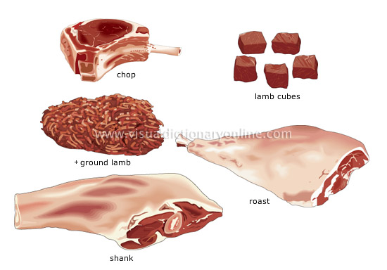 cuts of lamb