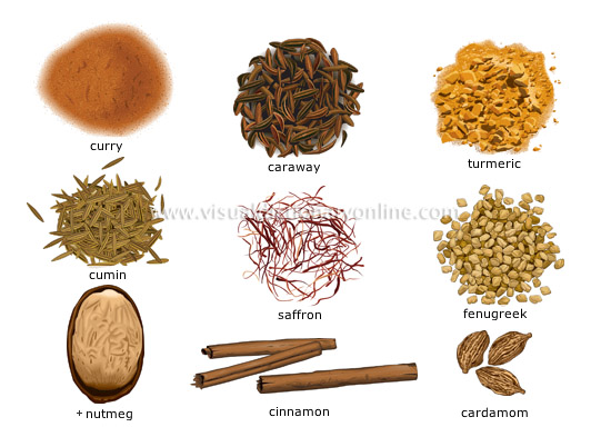 spices [2]