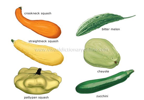 fruit vegetables [4]