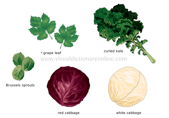 leaf vegetables [3]
