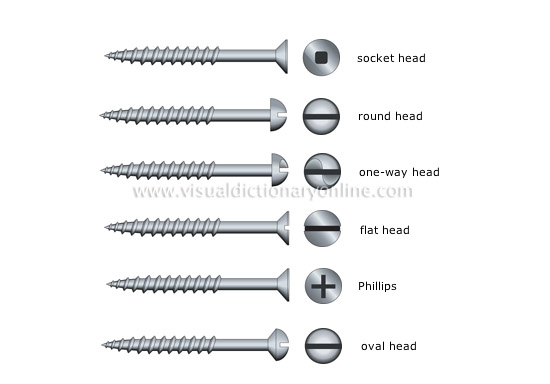 examples of heads