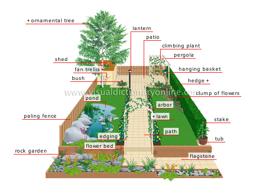 PLANTS & GARDENING :: GARDENING :: PLEASURE GARDEN image - Visual ...