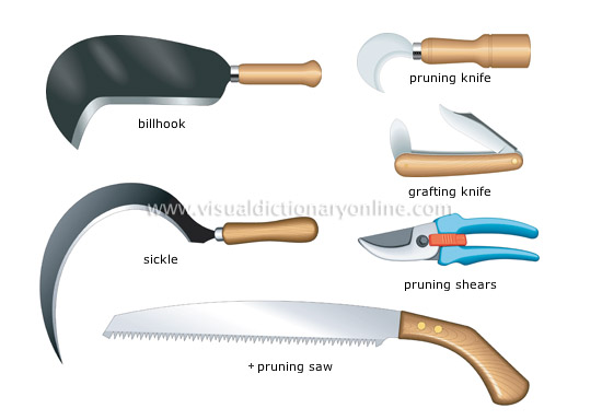 Plants gardening gardening pruning and cutting for Gardening tools pruning
