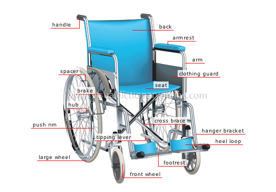 Society Health Wheelchair Image Visual Dictionary