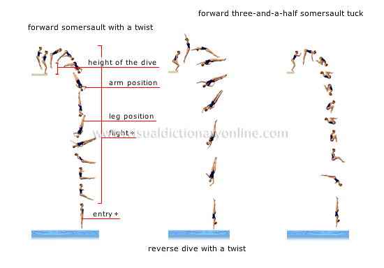 examples of dives [2]