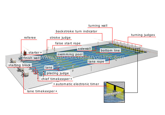 Olympic Swimming Pool Diagram olympic swimming pool diagram - page 3 - swimming pool reviews
