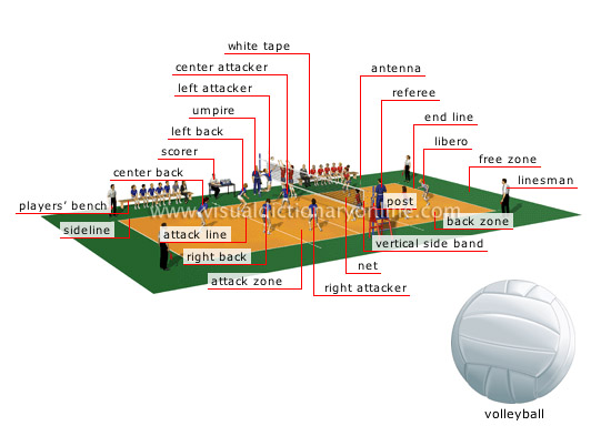 ball sports volleyball court image visual dictionary online