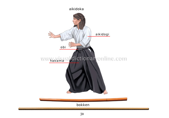 Aikido Images sports & games :: combat sports :: aikido image - visual dictionary