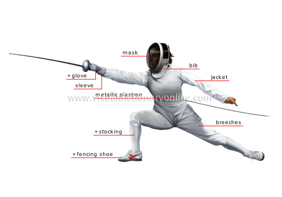 SPORTS & GAMES :: COMBAT SPORTS :: FENCING :: FENCER image ...