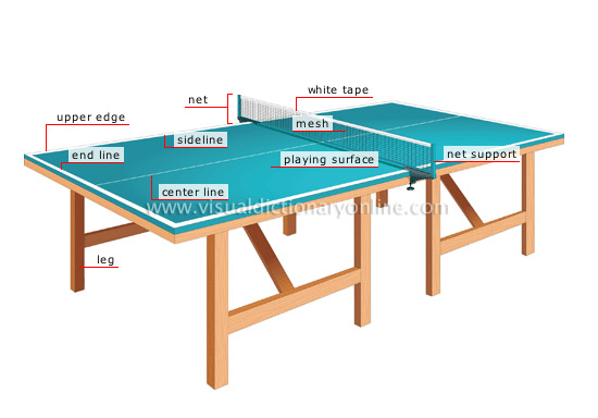 essay on table tennis game