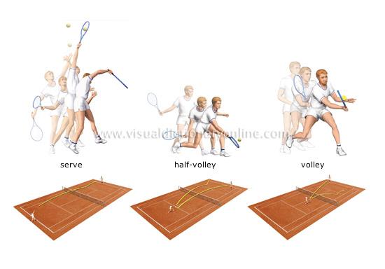 Strokes in tennis