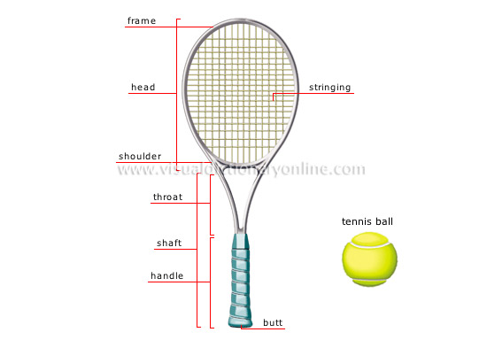 tennis racket - Visual Dictionary Online